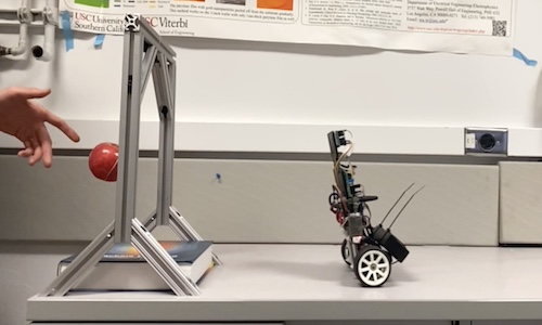 An inverted pendulum robot in an upright position.